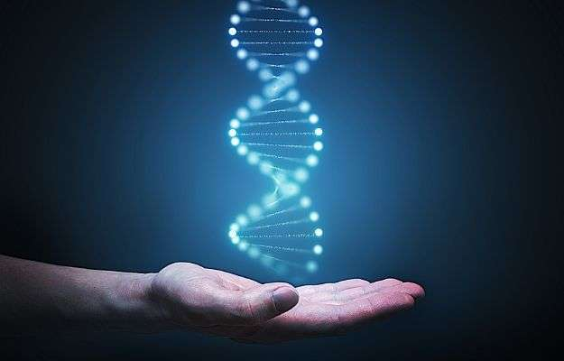 ADN concept and hand | What Do You Say to People Who Think Personal Genomics Is Just a Waste? | Personalized Genomics & Living Your Best Life
